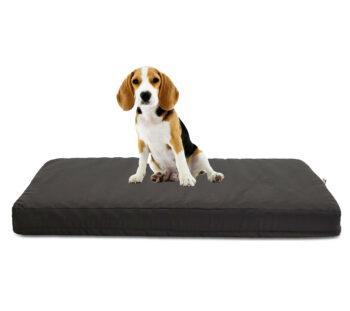 cuscino per cani - TECNOCUCI